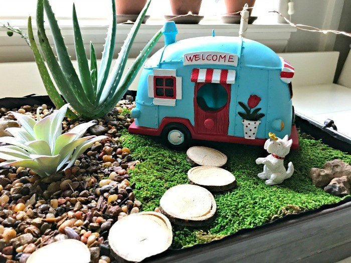 Fun Vintage DIY Indoor Fairy Garden Idea