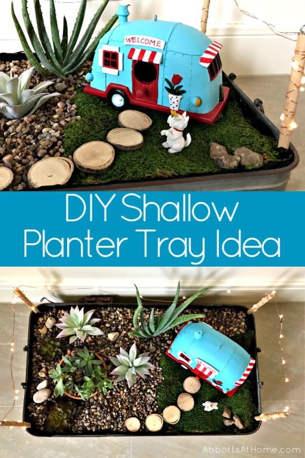 Easy DIY Steps to Make a DIY Shallow Planter Tray with tips on best plants to use for a shallow planter or garden. Can be used for DIY Indoor Fairy Garden too.